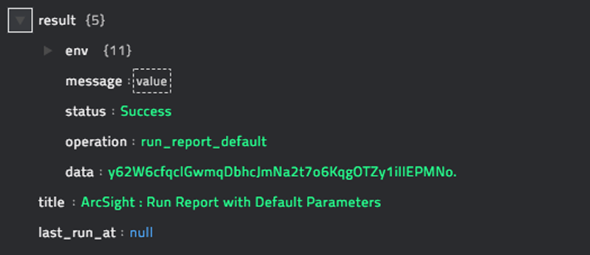 Sample output of the Run Report with Default Parameters operation