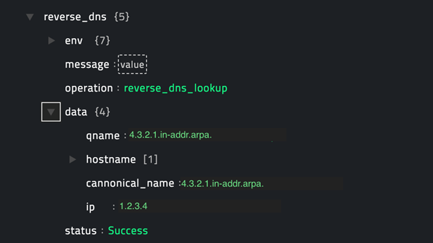 Sample output of the Reverse DNS Lookup operation