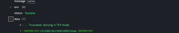 Sample output of the DNS Lookup operation