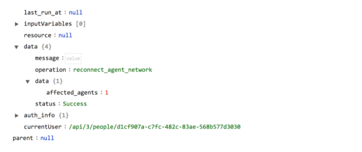 Sample output of the Reconnect Agent Network operation