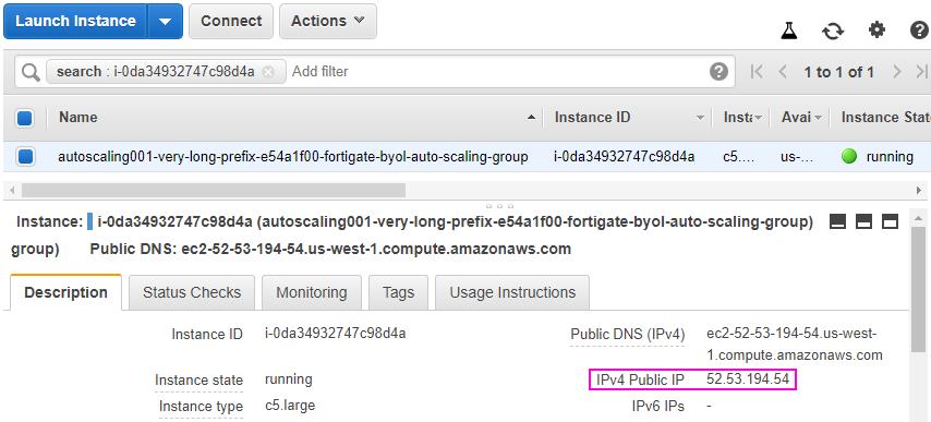Obtain the IPv4 Public IP address
